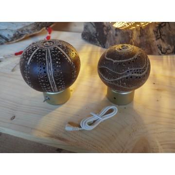 Luminaires Creakaz - lampe calebasse USB - Créations artisanales Guadeloupe